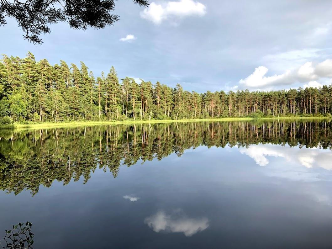 Skogsbad runt Storsjön
